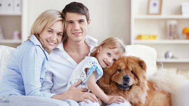 Wills & Trusts dog-young-family Direct Wills Felixstowe